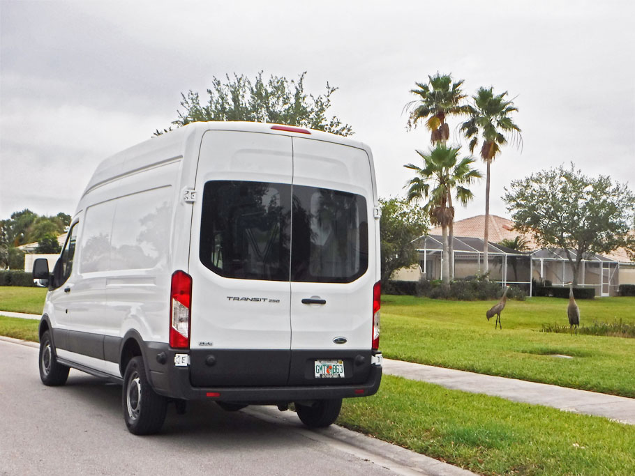 The sandhill cranes come to check out the new van in Florida.