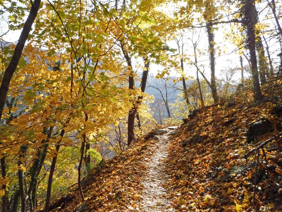 After a day in Harpers Ferry we hiked back to the visitor's center on a portion of the Appalachian Trail.