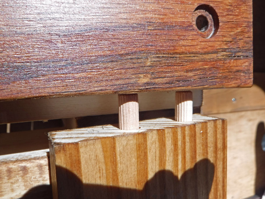 We used dowels to attach the legs for the moving side of the bed. Here is a closeup of the dowels partially in. They will be glued in next. (Dowels were used in the battery inverter drawer also. See video.)